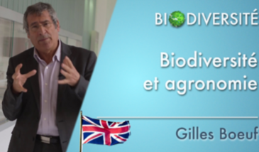 Biodiversity and agronomy - Clip