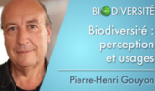 Biodiversité : perception et usages