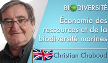 The economics of marine resources and biodiversity