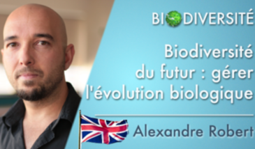 The future of biodiversity: managing biological evolution