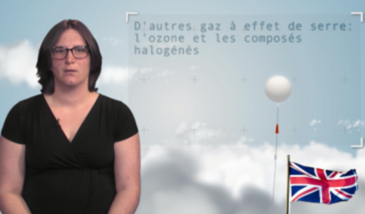 Other greenhouse gases: the ozone and halogenated compounds