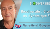 Biodiversity: state or dynamics ?