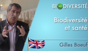 Biodiversity - Biodiversity and health / Biodiversity and the city (13 videos)