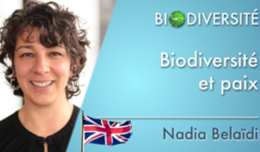Biodiversity and peace