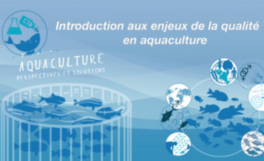 La qualité en aquaculture