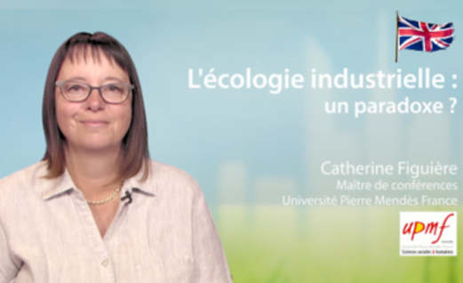 Industrial ecology: a paradox ?